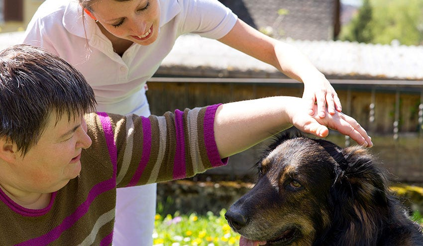 The Many Benefits of Animal-Assisted Therapy