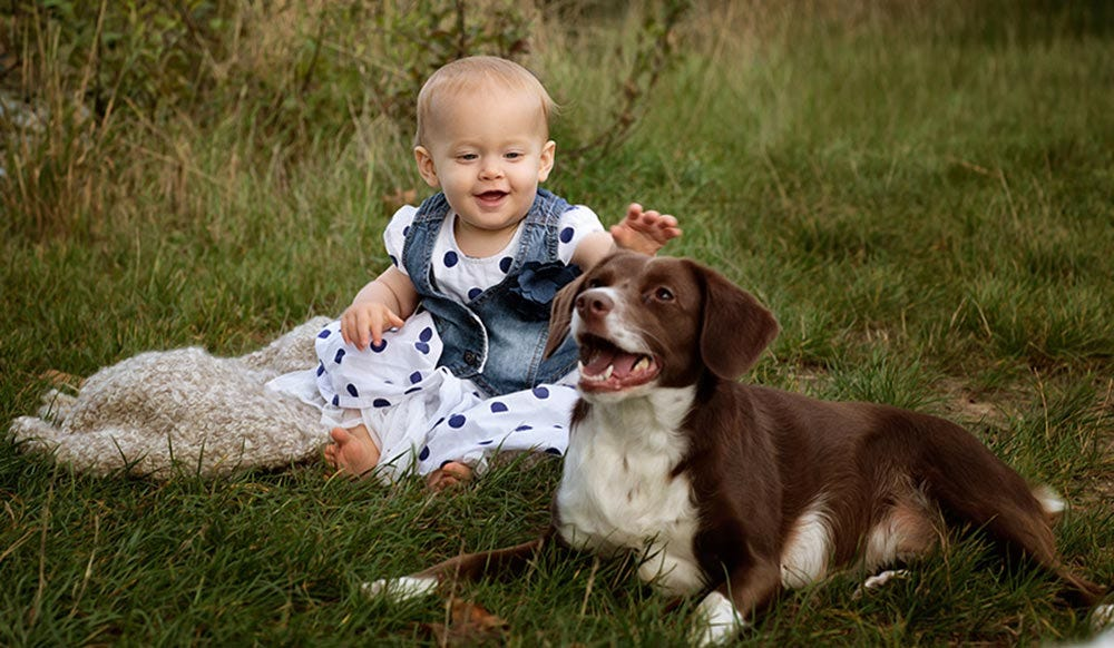 Can a Pet Dog Improve the Mental Health of Your Child?