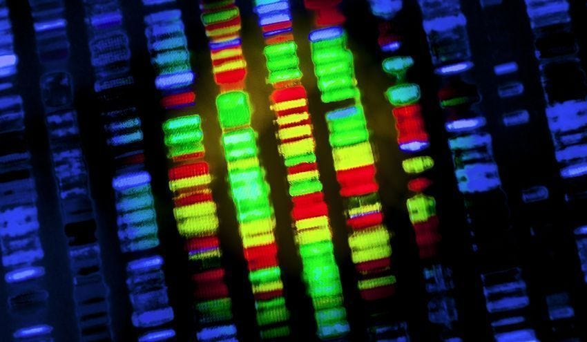 Should Life Insurance Companies Have Access To Clients' Genomes?