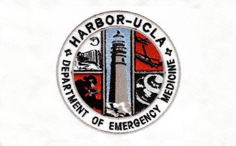 ucla harbor logo sewn out